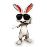 Happy bunny with sunglass Stock Photos