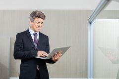 Happy Business Executive Working On Laptop Stock Images