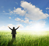 Happy business man in green fields and bule sky Stock Photos