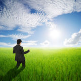Happy business man in green rice field and clouds sky Stock Photos