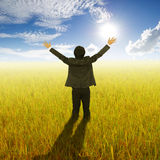 Happy Business Man standing in Yellow rice field and sun sky Royalty Free Stock Image