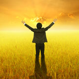 Happy Business Man standing in Yellow rice field and sunset Royalty Free Stock Photography