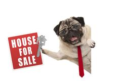 Happy business pug dog witg glasses and tie, holding up red house for sale sign and key royalty free stock images