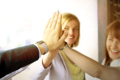 Happy business team giving high five in office.  Stock Photos
