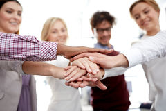 Happy business team with hands on top at office Royalty Free Stock Photos
