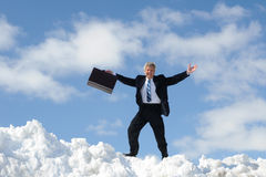 Happy Businessman With Briefcase. Happy Businessman On A Summit royalty free stock photos