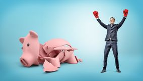 A happy businessman has his hands raised up in victory while he stands beside a broken piggy bank. Stock Photos
