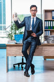 The happy businessman with money sacks in the office Stock Photography