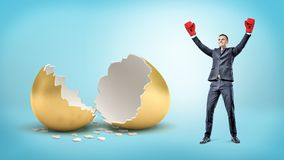 A happy businessman raises his hands in victory wearing boxing gloves and stands near a broken golden egg. Royalty Free Stock Image
