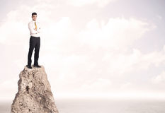 Happy businessman standing on cliff Royalty Free Stock Image