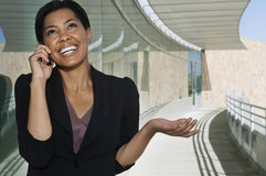 Happy Businesswoman On Call Stock Images