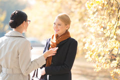 Happy businesswoman conversing with colleague at park on sunny day Royalty Free Stock Image