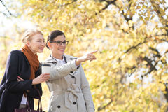 Happy businesswoman showing something to colleague at park Stock Image