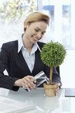 Happy businesswoman watering potted plant Royalty Free Stock Images