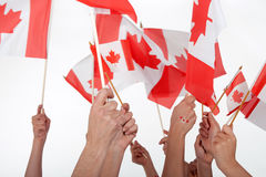 Happy Canada Day!. Raised hands waving Canadian flags Stock Image