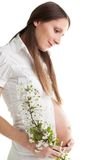 Happy caring woman expecting baby Stock Photography