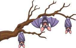 Happy cartoon bat hanging on tree Stock Images