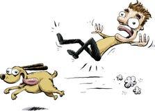 Dashing Dog Hits Man Royalty Free Stock Photos