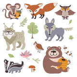 Happy cartoon and funny wood animals in forest vector collection. Forest animal lynx and bird, illustration of zoo animal bear and owl Royalty Free Stock Images