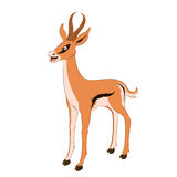 Happy cartoon Gazelle Stock Image