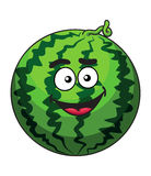 Happy cartoon green watermelon. Happy green cartoon watermelon fruit with a cute squiggly stem and happy grin, isolated on white Stock Photo