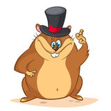 Happy cartoon groundhog on his day with mayor hat. Vector illustration Royalty Free Stock Photo