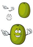 Happy cartoon kiwi fruit character with smile. Happy kiwi fruit cartoon character with fibrous dark green peel and smiling face isolated on white background Royalty Free Stock Image