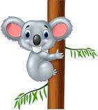 Happy cartoon koala Royalty Free Stock Photo