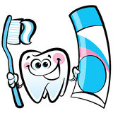 Happy cartoon molar tooth character holding dental toothbrush  Stock Image