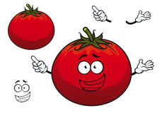 Happy cartoon plump red tomato vegetable character Royalty Free Stock Images