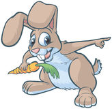 Happy Cartoon Rabbit Pointing. Vector cartoon clip art of a happy brown bunny or rabbit holding a carrot and pointing to the right stock illustration