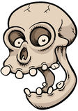 Happy Cartoon Skull Stock Photography