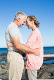 Happy casual couple smiling at each other by the coast Stock Images