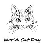 Happy Cat Day. World Cat Day. Happy Cat Day. International Cat Day. Cat sketch is on white background. Vector illustration vector illustration