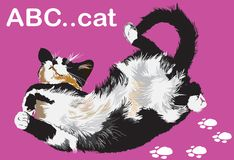 Cat lie down cartoon Royalty Free Stock Image