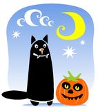 Happy cat and pumpkin Stock Images