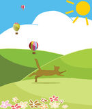 Happy cat. Run to the hills in sunny day Royalty Free Stock Images