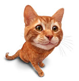 Happy Cat. On a white background as a cute orange tabby kitty with a smile in forced perspective as a symbol of pet care or veterinary health Stock Image
