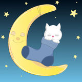 Happy cat who sleeps on the moon in sock. Royalty Free Stock Photography