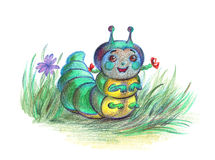 Happy caterpillar. Caterpillar - baby in the grass Stock Images