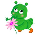 Happy  caterpillar. With a flower Stock Photos