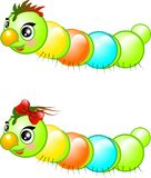 Happy caterpillars Stock Images