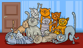 Happy cats group cartoon illustration Royalty Free Stock Image
