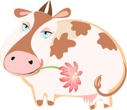 Happy cattle with a flower Royalty Free Stock Image