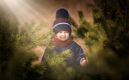 Happy caucasian child playing outdoor - hiding behind pine tree Stock Photo