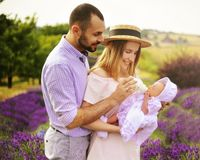 Happy caucasian family mother, father and daughter are wearing white clothes are having fun in lavender field. A couple is feeding stock photo