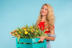 Happy caucasian blonde woman florist laughing and holding big box of tulips on blue background royalty free stock image