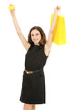 Happy caucasian woman showing credit card and shopping bag Stock Photos