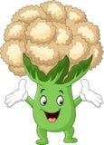 Happy cauliflower cartoon Stock Images