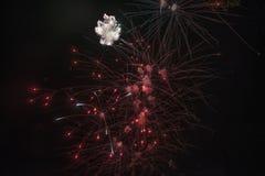 Happy celebration Firework. Red light in sky Stock Photos